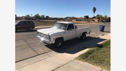 1977 Chevrolet C/K Truck for sale 101080583